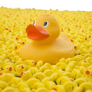 Duck Race Day